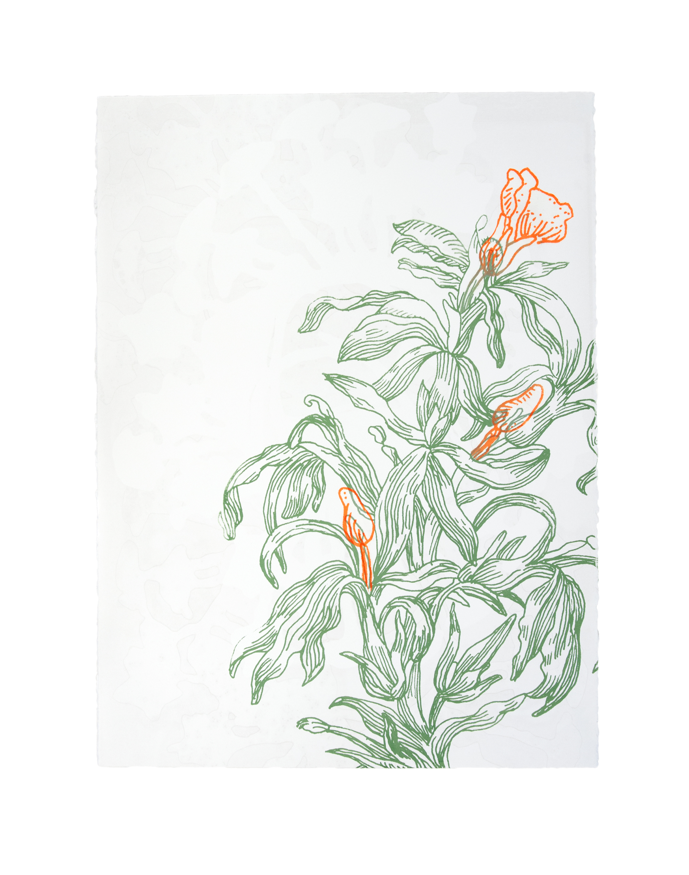 Future Flower I