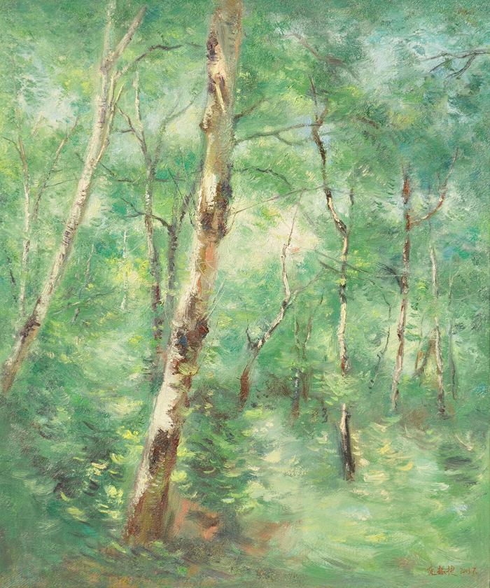 白桦林 Birch forest